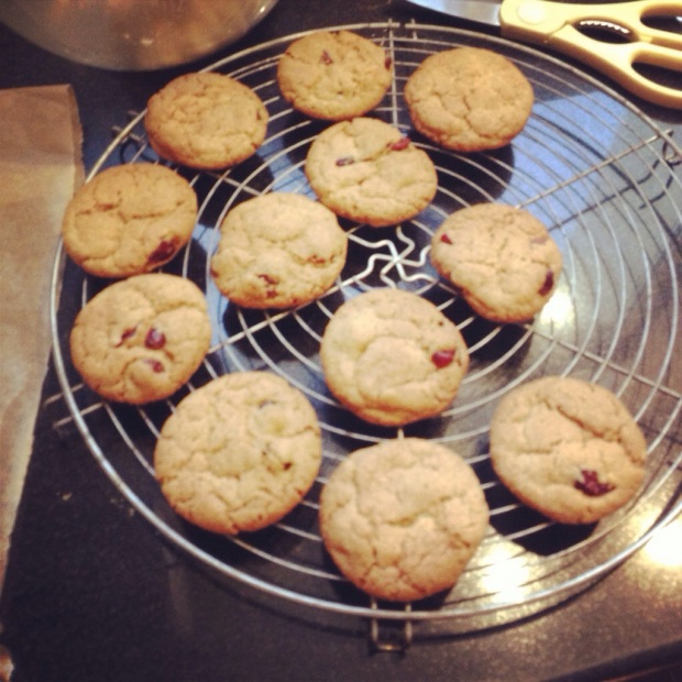 ow-Covered Cranberry Ginger Snap Biscuits